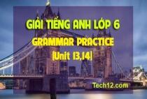 GRAMMAR PRACTICE (Unit 13,14)