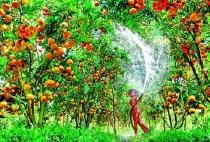 Bài 9: Hoạt động sản xuất nông nghiệp ở đới nóng - Địa lí 7 trang 30
