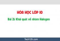 Giải bài 21: Khái quát về nhóm Halogen