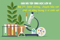 Giải Bài 22: Dinh dưỡng, chuyển hóa vật chất và năng lượng ở vi sinh vật