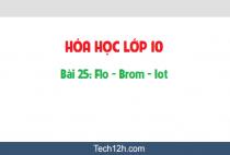 Giải bài 25: Flo - Brom - Iot