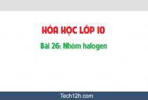 Giải bài 26: Luyện tập: Nhóm halogen