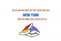 Đề và đáp án môn Toán mã đề 119 thi THPT quốc gia năm 2017 - đáp án của bộ GD-ĐT