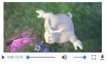 Học HTML - Cách chèn media: nhạc, video  trong html