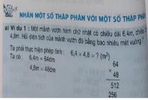 Giải bài Nhân một số thập phân với một số thập phân - sgk toán 5 trang 58