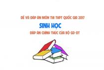Đề và đáp án môn Sinh tất cả các mã đề - thi THPT quốc gia 2017
