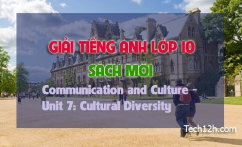 Communication and Culture - Unit 7: Cutural Diversity