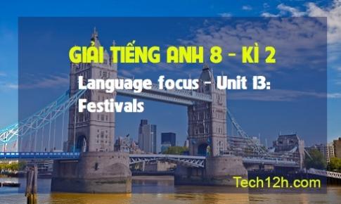 Language focus - Unit 13: Festivals