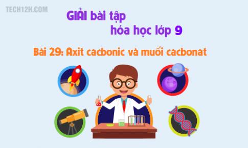 Giải bài 29 hóa học 9: Axit cacbonic và muối cacbonat