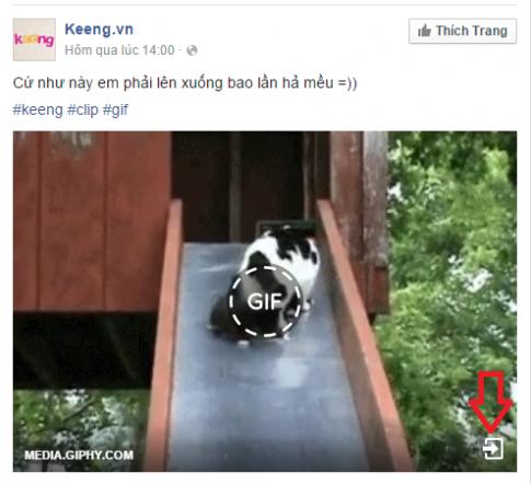 Cách đăng ảnh gif ảnh động lên facebook: đơn giản, nhanh chóng