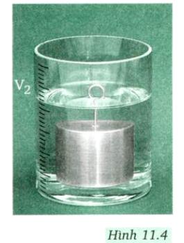 Giải bài 11 vật lí 8: Thực hành: Nghiệm lại lực đẩy Ác-si-mét